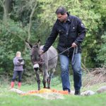 Führungskraft trifft auf Sturkopf: Esel-Workshop am 16. September 2016